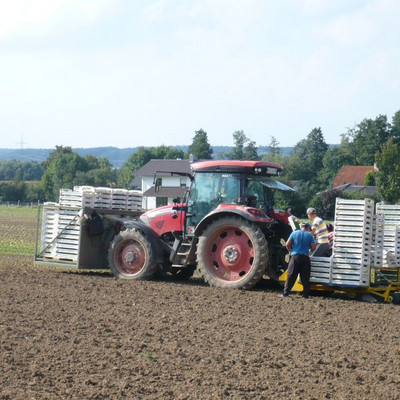 Erntearbeiter mit Traktor auf einem Feld