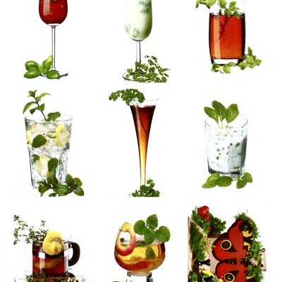 neun verschiedene Cocktails mit Kräuterdekoration