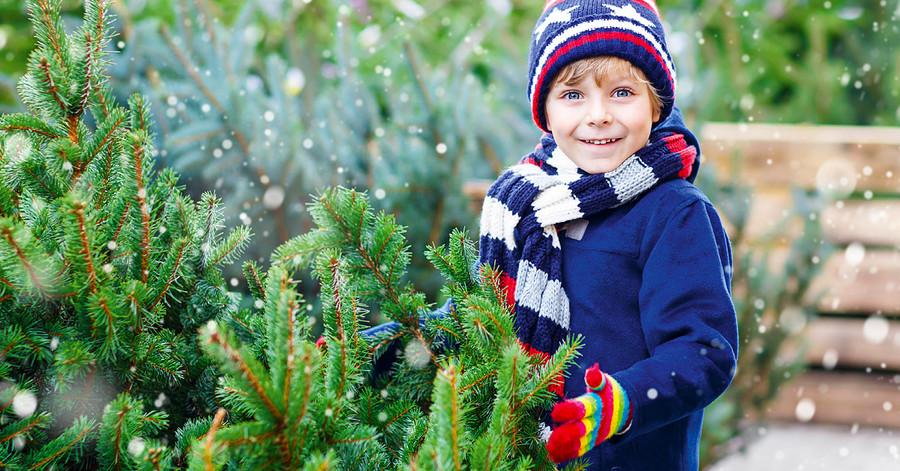 Junge in Winterkleidung mit einem Weihnachtsbaum im Schnee