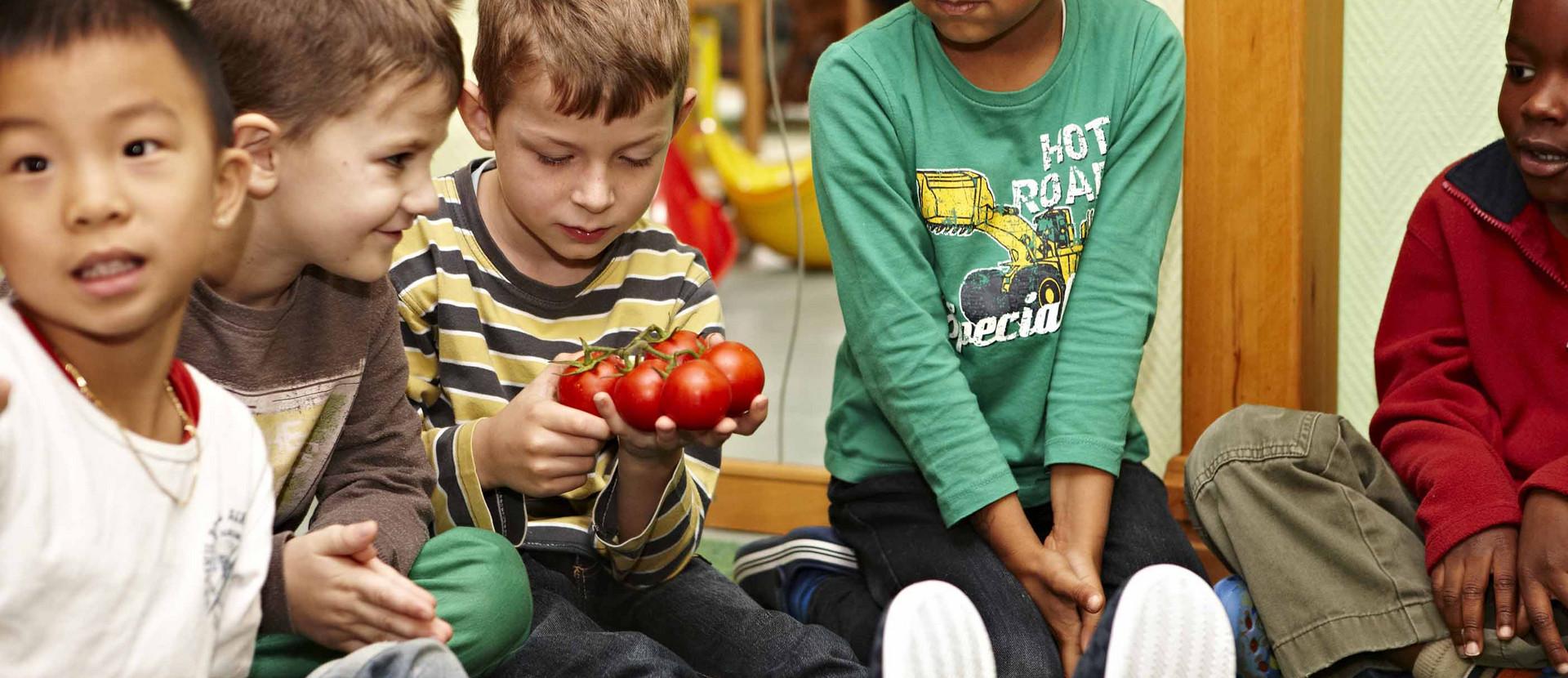 Kinder sitzen am Boden und schauen Tomaten an