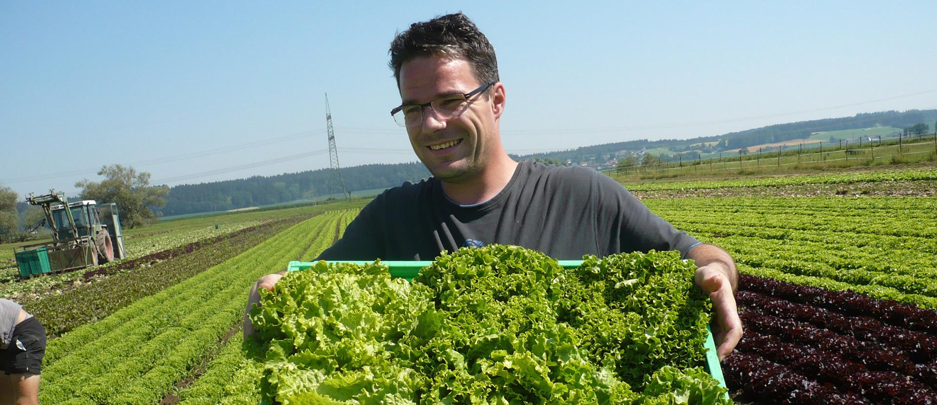 Herr Stockner mit einer Kiste Salat