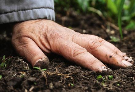 Unser Handeln Hand auf Erdboden
