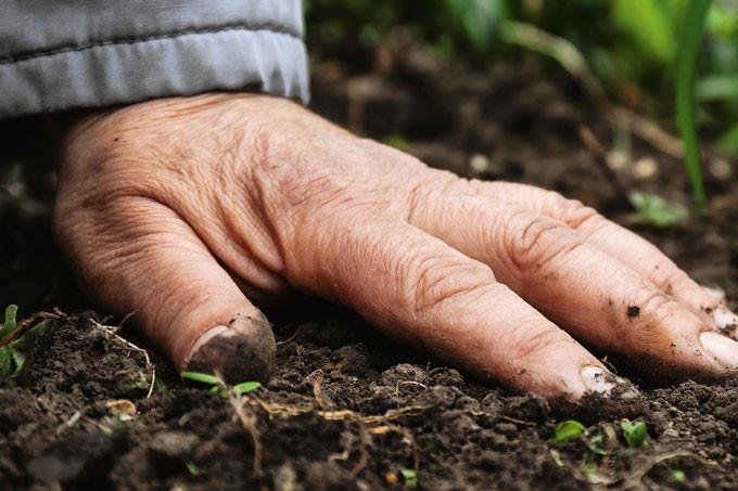Hand auf Erdboden