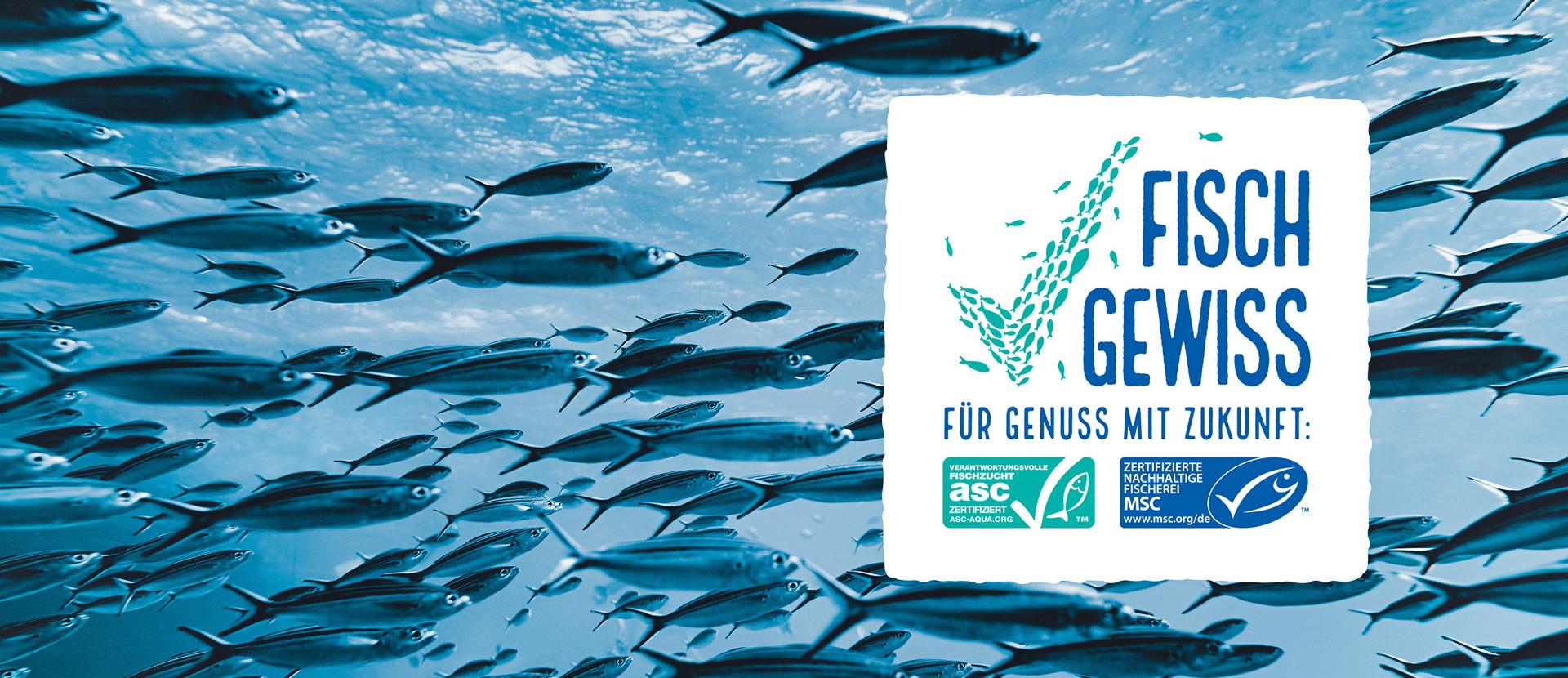 Fischschwarm im Wasser und FischGewiss Kampagnenlogo