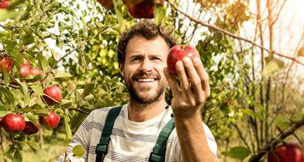 Bio Landwirtschaft Apfelbauer mit Apfel in der Hand