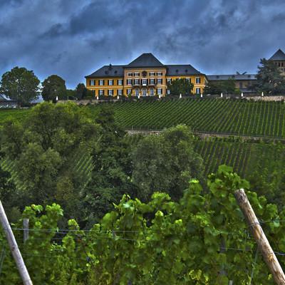 Schloss Johannisberg auf Weinberg mit Reben