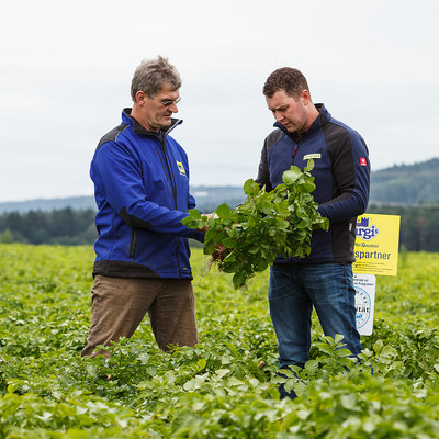 Klaus Schmidt und Johannes Seemeier auf einem Kartoffelfeld mit Kartoffelpflanze in der Hand