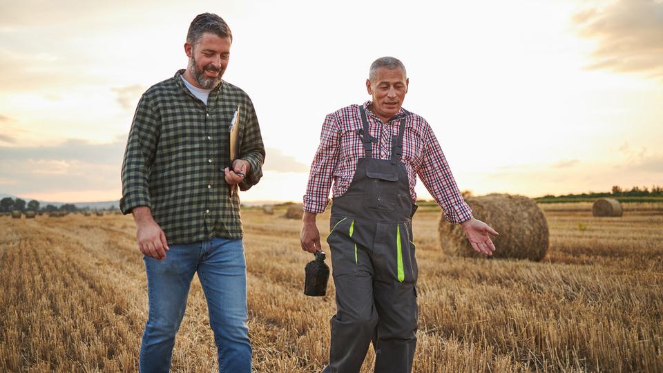 Zwei Menschen laufen nebeneinander auf einem Feld