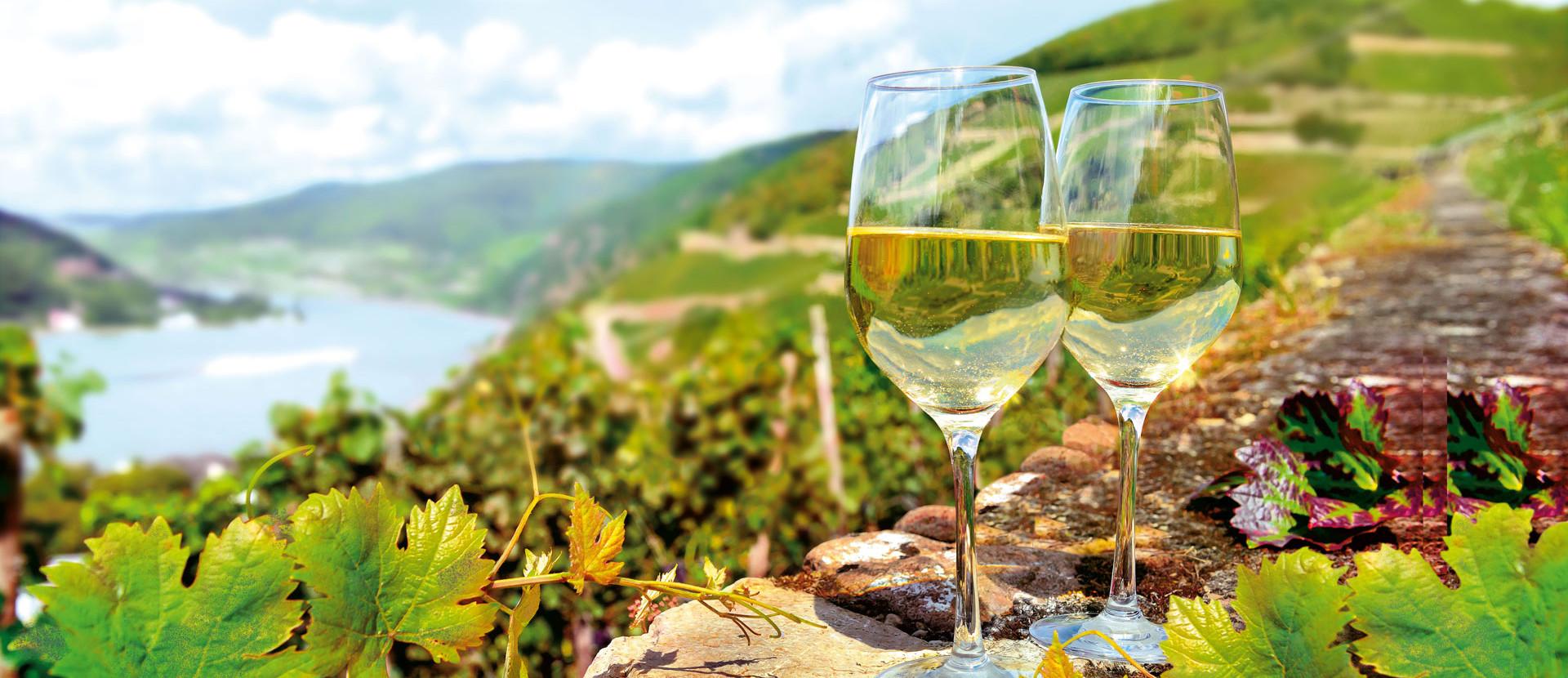 Weingläser vor Weinbergen