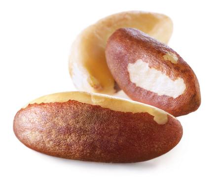 3 einzelne Früchte der Paranuss