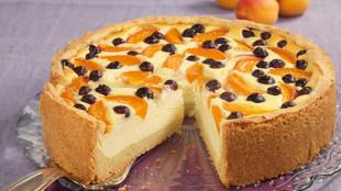Aprikosen Quarkkuchen