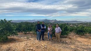 Hersteller Familie vor Zitrusfrüchte Plantage