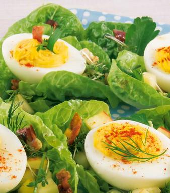Kraeuter Osternest gefuellt Eier