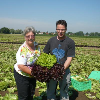 Mann und Frau auf einem Salatfeld mit Salatköpfen in den Händen