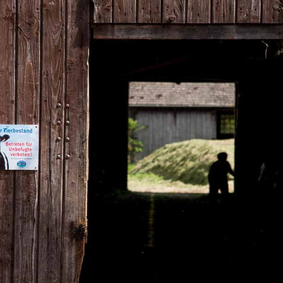 """Bild Eingang von Scheune """"Wertvoller Tierbestand"""""""