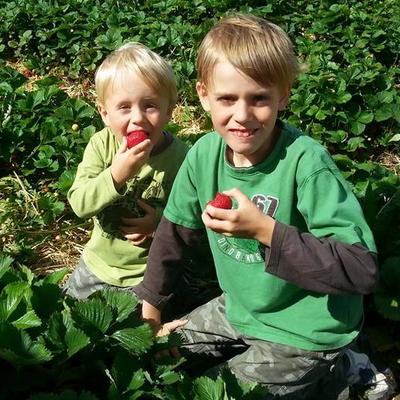 zwei Jungs sitzen auf einem Erdbeerfeld und essen Erdbeeren