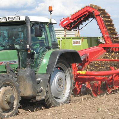 Traktor erntet Kartoffeln