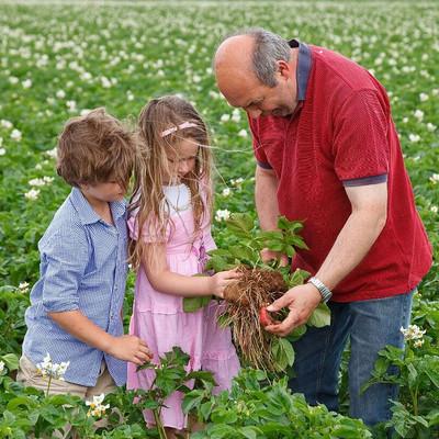 Landwirt mit Kindern auf einem Feld