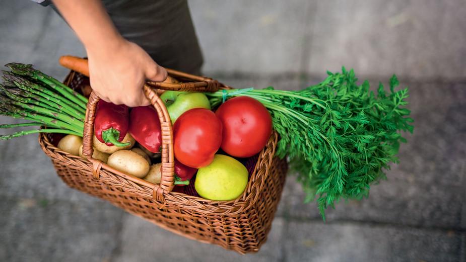 Nachhaltige Lebensmittel Korb mit Obst und Gemuese
