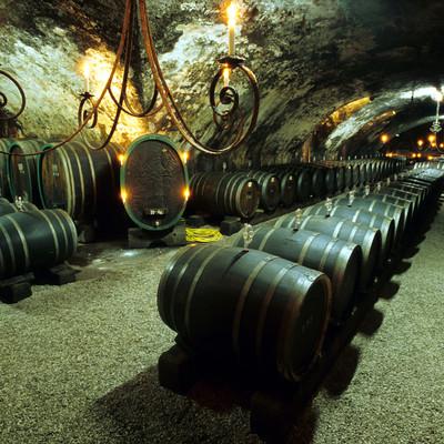 Weinfässer gelagert im Weinkeller