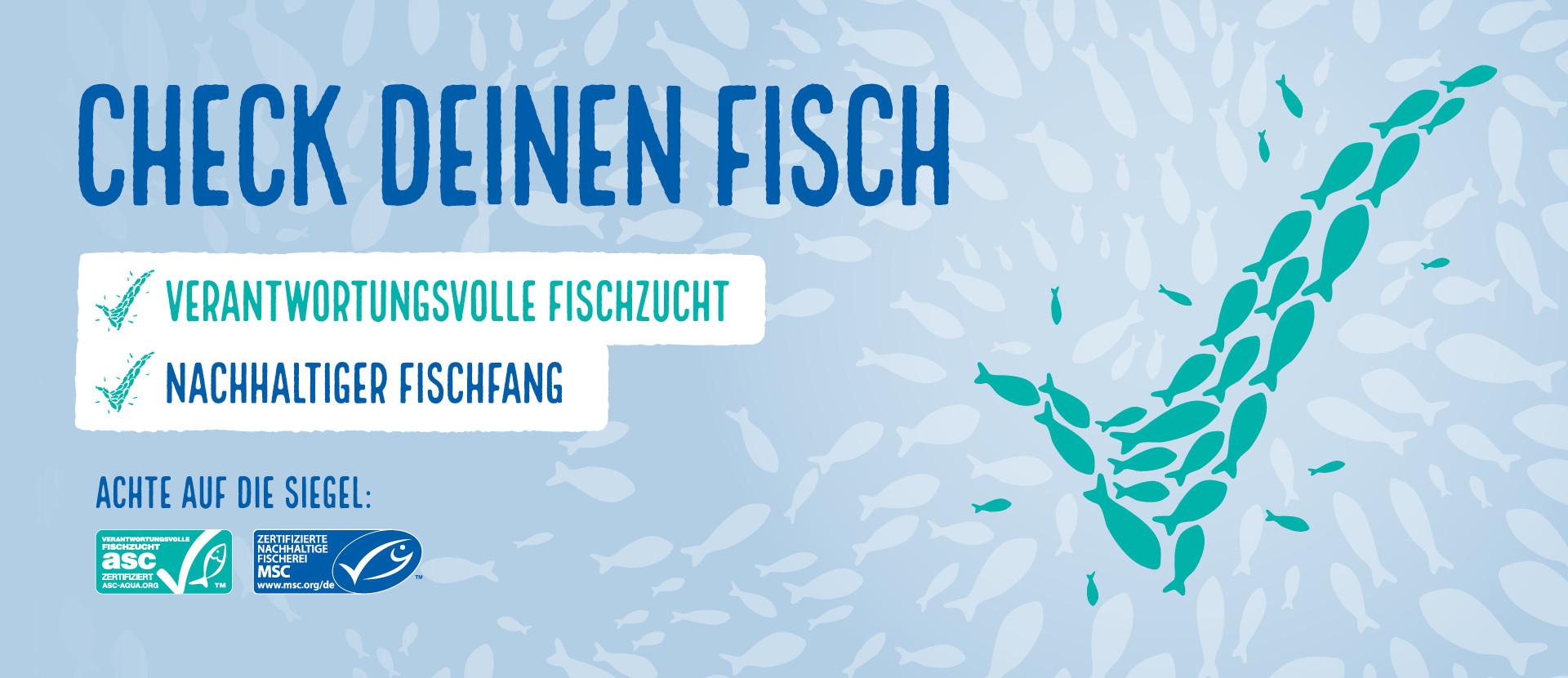 Kampagnenvisual MSC und ASC zertifizierten Fisch