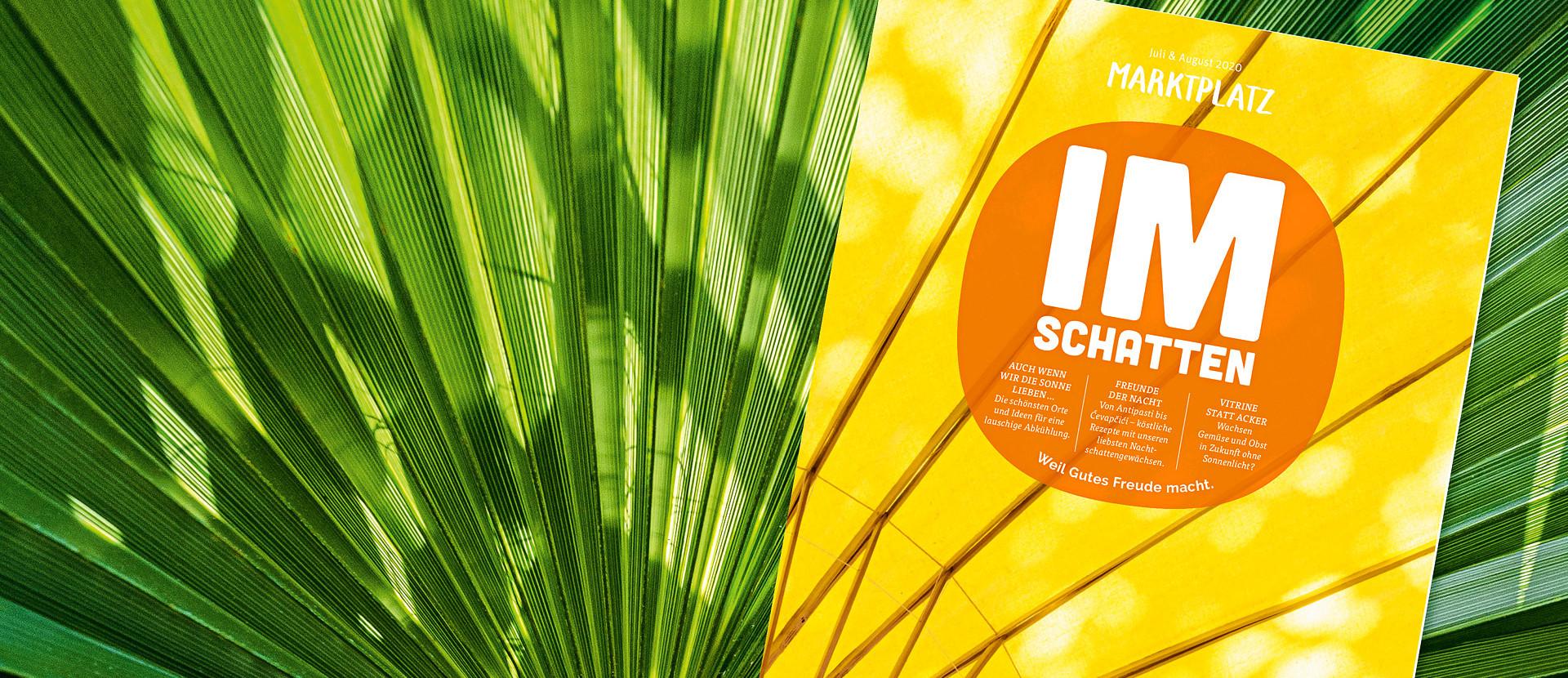 großes Palmenblatt mit tegut Kundenmagazin Juli August davor