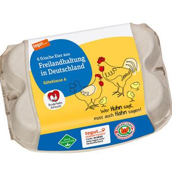 6 frische Eier