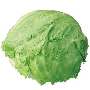 Abbildung Eisbergsalat