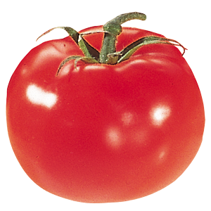 Abbildung Tomate