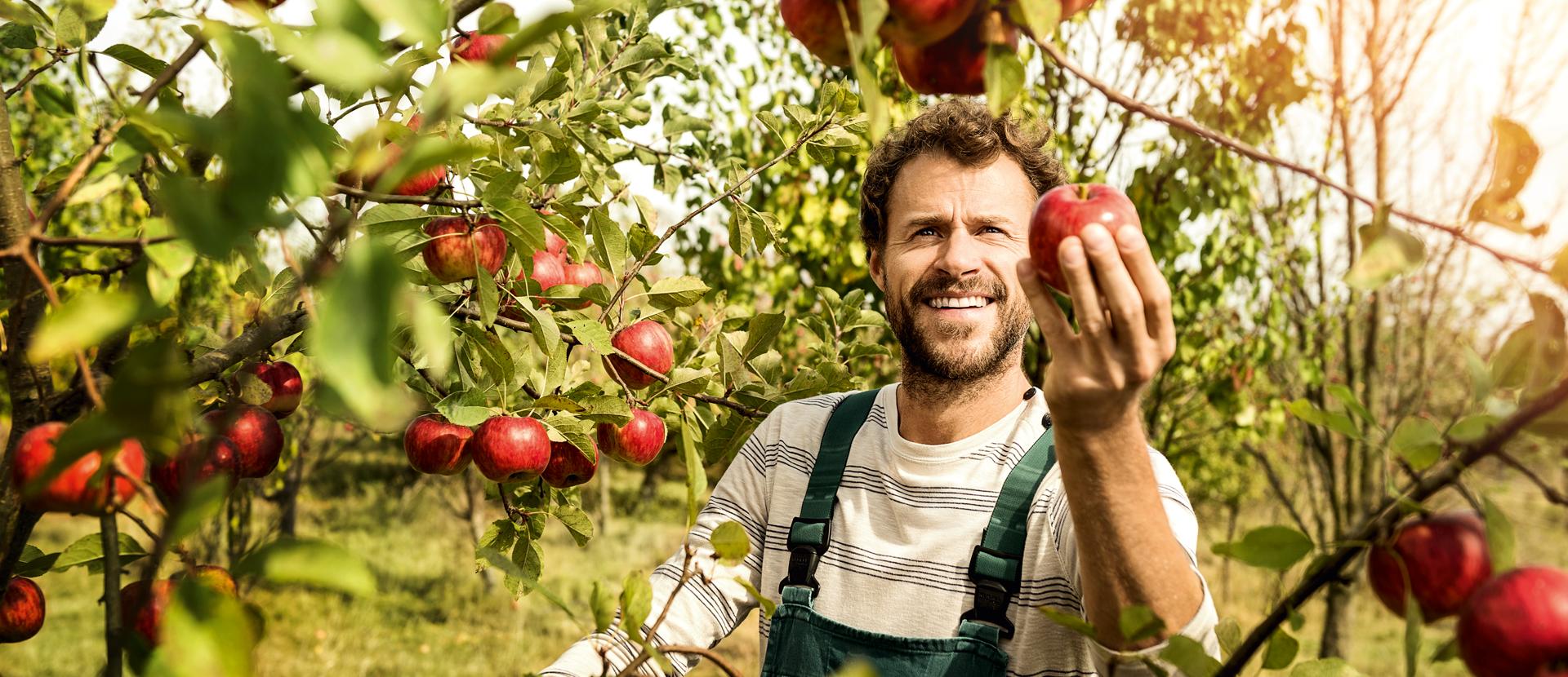 Apfelbauer mit Apfel in der Hand