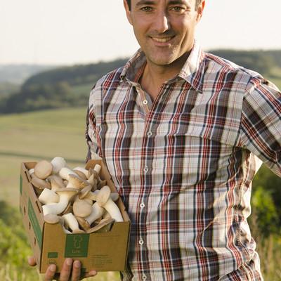 Mann steht auf einer Wiese und hat einen Karton mit Pilzen in der Hand