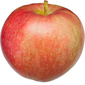 Abbildung Apfel