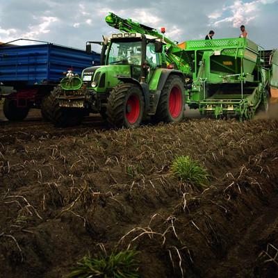 Traktor auf Feld während der Kartoffelernte