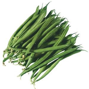 Abbildung Grüne Bohne