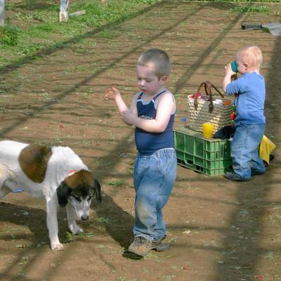 Kinder mit Getränken und Hund