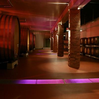 beleuchteter Weinkeller