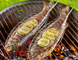 Gegrillte Forelle mit Curry-Kokos-Sauce