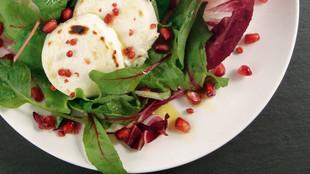 Granatapfel-Salat mit Radiccio und Ziegenkäsetalern