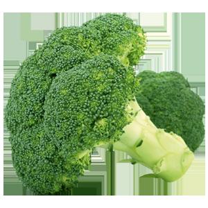 Abbildung Brokkoli