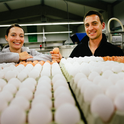 Frau und Mann schauen über Stiegen mit weissen und braunen Eiern