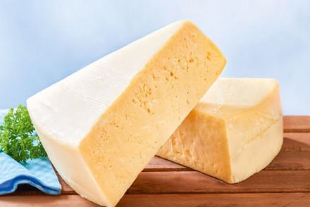 zwei Stücke Käse