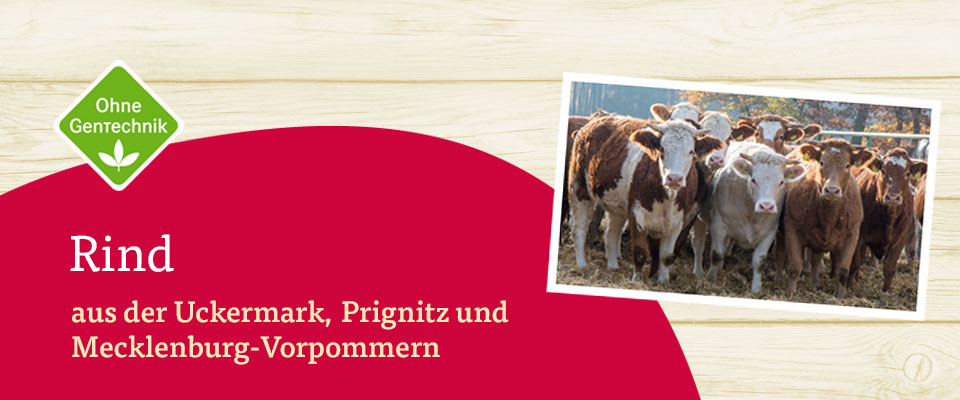 eine Herde LandPrimus Rinder