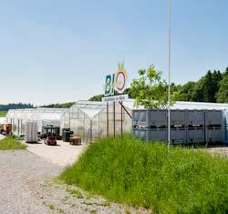 Gewächshäuser mit Bio Spargel