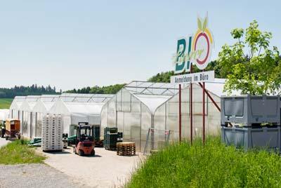 Gewächshäuser für Bio-Spargel