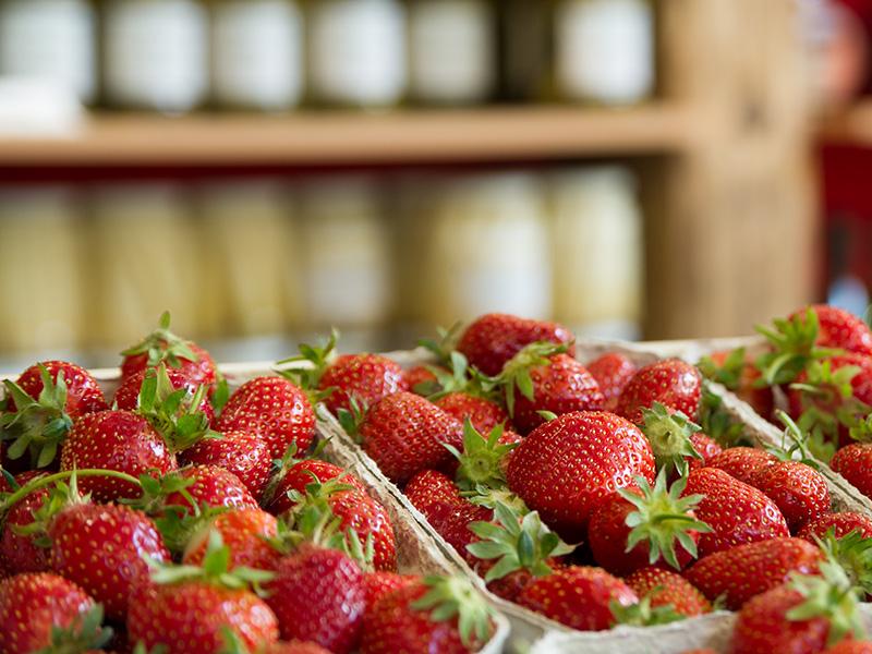 Erdbeeren in Schalen