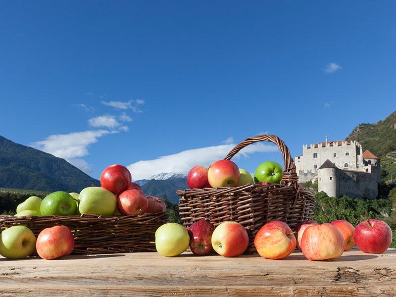 Äpfel auf einem Tisch und in einem Korb vor einem Alpenpanorama