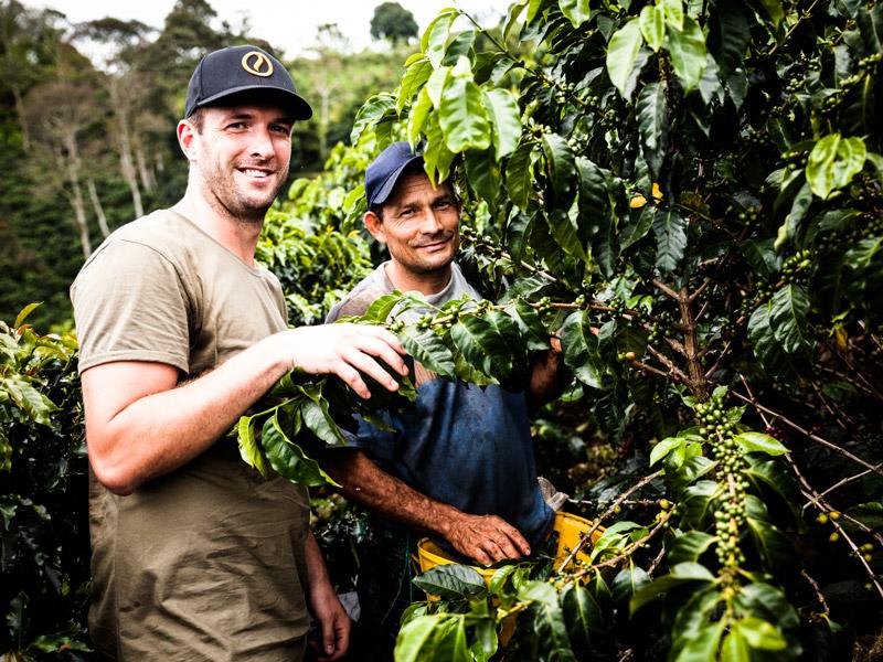 Zwei Männer vor einem Kaffebaum
