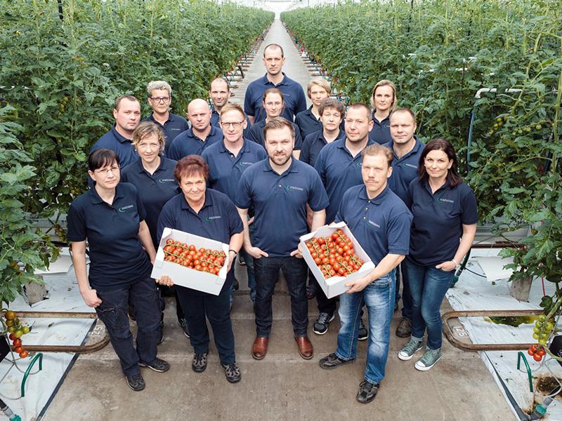 Gruppenbild der 18 Mitarbeiter und Mitarbeiterinnen, 9 Frauen und 9 Männer stehen in einem Gang zwischen zwei Tomatenpflanzreihen in einem Gewächshaus, in der vorderen Reihe werden reife Tomaten in Kisten präsentiert
