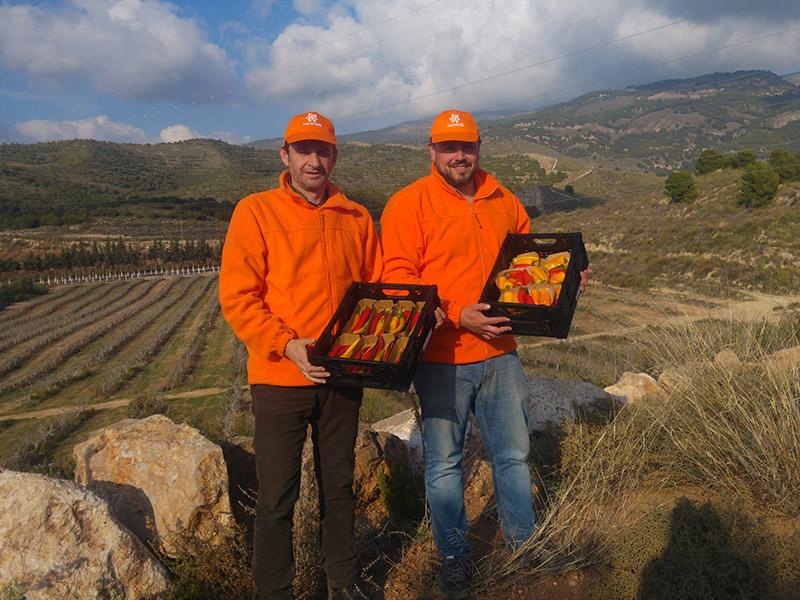 Zwei Mitarbeiter halten Gemüsekisten mit Paprikafrüchten in den Händen, im Hintergrund sind Felder und Berge zu erkennen