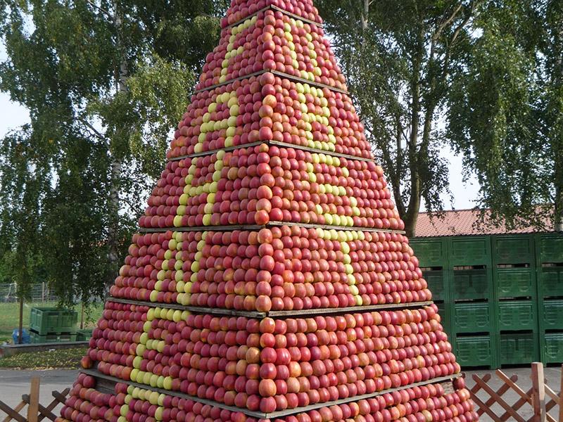 Pyramide aus Äpfeln